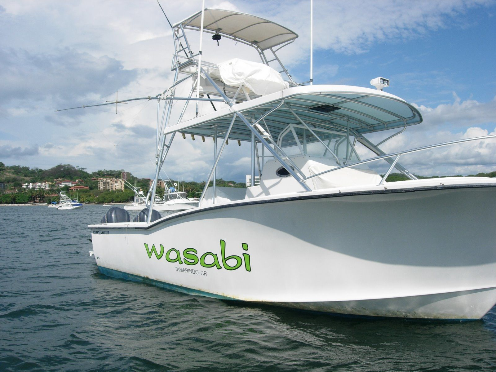 Wasabi Fishing - The Boat