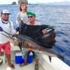 Wasabi Fishing - Sailfish