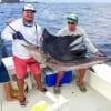 Wasabi Fishing - Sailfish